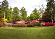 Virginia Water in full bloom